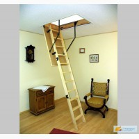 Чердачная лестница OMAN Standard - Бук, 60х120х280мм