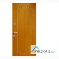 Входные металлические двери эконом, премиум, броня в Перми