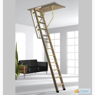 Чердачная лестница ROTO Cadet 3 ISO-RC 70х120х288мм