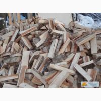 Заказ доставки дров из березы.