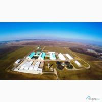 Строительство молочных ферм под ключ